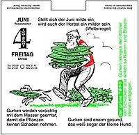 Der Grüne Wink, Gärtner Pötschke Abreißkalender 2019 - Produktdetailbild 2
