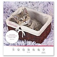 Der himmlische Katzenkalender 2019 - Produktdetailbild 1