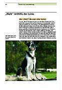 Der Hund an der Leine - Produktdetailbild 5