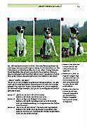 Der Hund an der Leine - Produktdetailbild 6