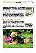 Der Hund an der Leine - Produktdetailbild 8