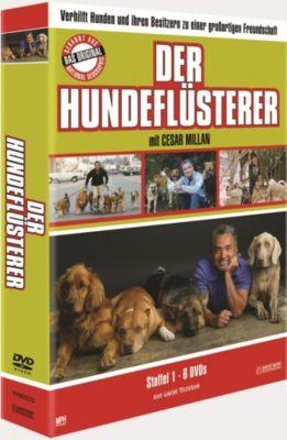 Der Hundeflüsterer - Staffel 1, Diverse Interpreten