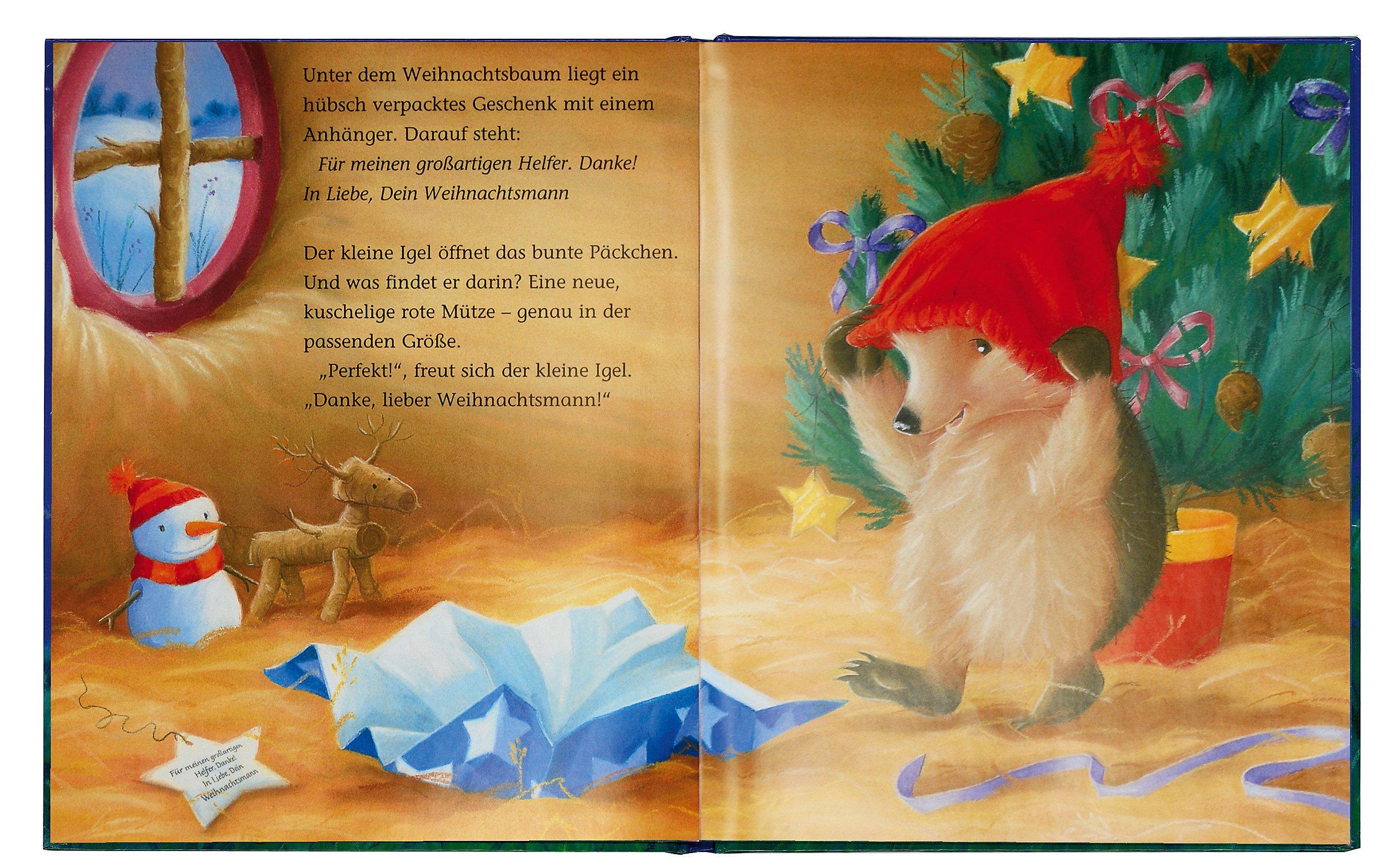 Der kleine Igel und der Weihnachtsschlitten Buch portofrei