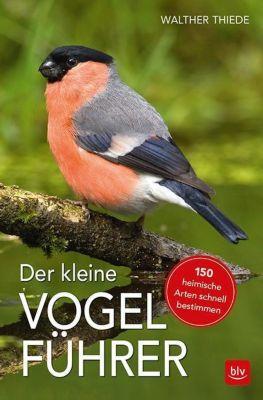 Der kleine Vogelführer - Walther Thiede |