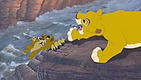 Der König der Löwen 2 - Simbas Königreich - Produktdetailbild 5