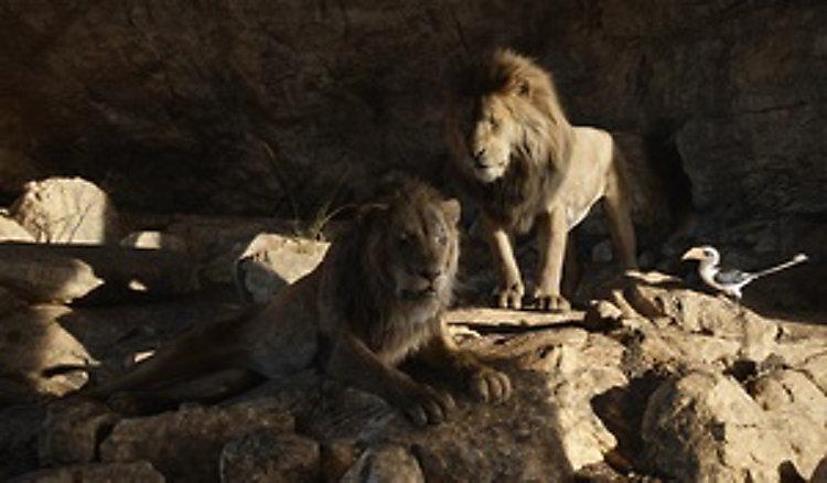 Der König Der Löwen 2019 Dvd Bei Weltbild De Bestellen