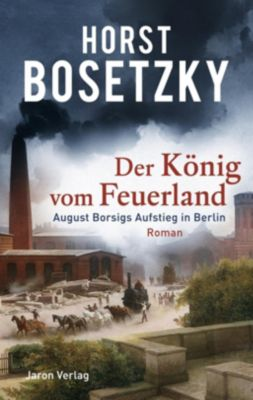 Der König vom Feuerland - Horst Bosetzky |