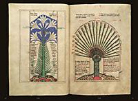 Der Liber floridus in Wolfenbüttel - Produktdetailbild 6