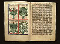 Der Liber floridus in Wolfenbüttel - Produktdetailbild 1