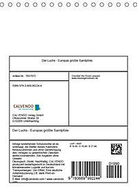 Der Luchs - Europas größte Samtpfote (Tischkalender 2019 DIN A5 hoch) - Produktdetailbild 13