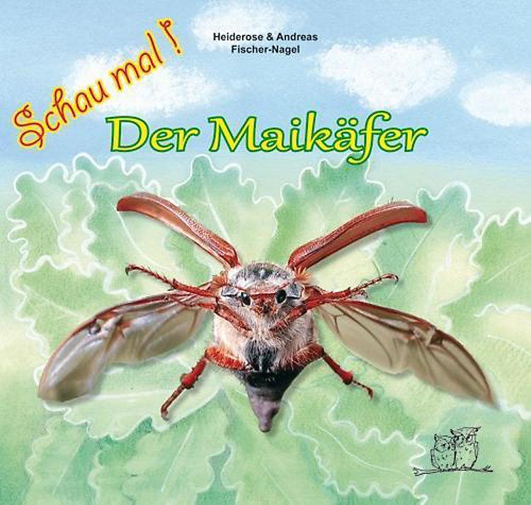 Der Maikäfer Buch Von Heiderose Fischer Nagel