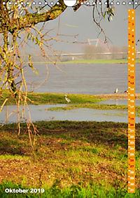 Der Meerbusch - Meerbuscher Rheinspaziergang (Wandkalender 2019 DIN A4 hoch) - Produktdetailbild 10