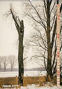 Der Meerbusch - Meerbuscher Rheinspaziergang (Wandkalender 2019 DIN A2 hoch) - Produktdetailbild 1