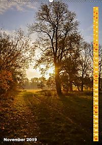 Der Meerbusch - Meerbuscher Rheinspaziergang (Wandkalender 2019 DIN A2 hoch) - Produktdetailbild 11