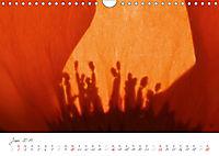 Der Mohn ist aufgegangen (Wandkalender 2019 DIN A4 quer) - Produktdetailbild 6