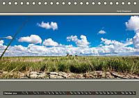Der Pilsumer Leuchtturm (Tischkalender 2019 DIN A5 quer) - Produktdetailbild 10