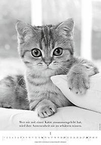 Der poetische Katzenkalender 2018 - Produktdetailbild 1