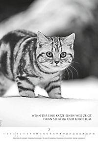 Der poetische Katzenkalender 2018 - Produktdetailbild 2