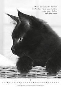 Der poetische Katzenkalender 2018 - Produktdetailbild 3