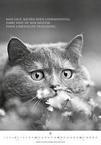 Der poetische Katzenkalender 2018 - Produktdetailbild 8