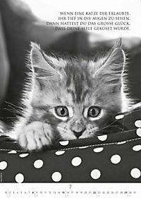 Der poetische Katzenkalender 2018 - Produktdetailbild 7