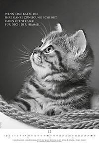 Der poetische Katzenkalender 2018 - Produktdetailbild 12