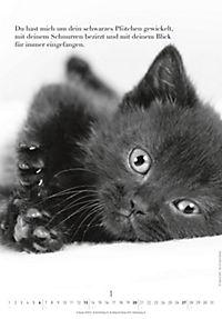 Der poetische Katzenkalender 2019 - Produktdetailbild 1