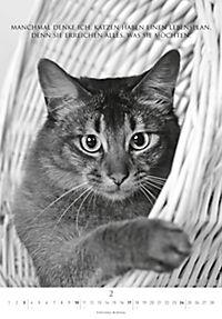 Der poetische Katzenkalender 2019 - Produktdetailbild 2