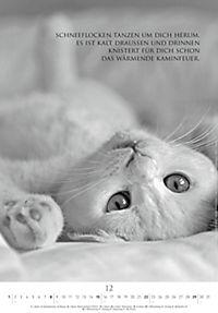 Der poetische Katzenkalender 2019 - Produktdetailbild 12