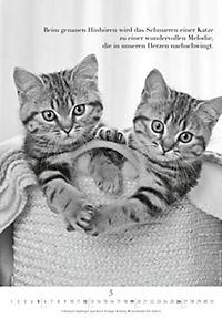 Der poetische Katzenkalender 2019 - Produktdetailbild 5