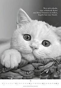 Der poetische Katzenkalender 2019 - Produktdetailbild 9