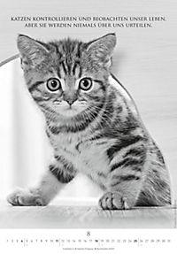 Der poetische Katzenkalender 2019 - Produktdetailbild 8