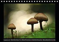 Der Reichswald bei Kleve (Tischkalender 2019 DIN A5 quer) - Produktdetailbild 9