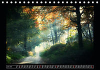 Der Reichswald bei Kleve (Tischkalender 2019 DIN A5 quer) - Produktdetailbild 6