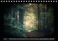 Der Reichswald bei Kleve (Tischkalender 2019 DIN A5 quer) - Produktdetailbild 7