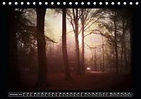 Der Reichswald bei Kleve (Tischkalender 2019 DIN A5 quer) - Produktdetailbild 11