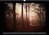 Der Reichswald bei Kleve (Wandkalender 2019 DIN A3 quer) - Produktdetailbild 11