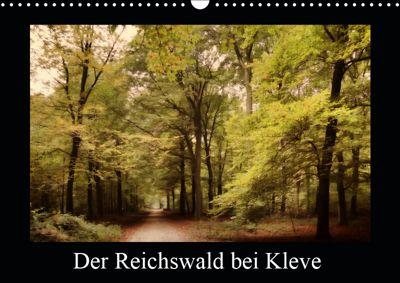 Der Reichswald bei Kleve (Wandkalender 2019 DIN A3 quer), Gudrun Nitzold-Briele
