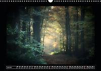 Der Reichswald bei Kleve (Wandkalender 2019 DIN A3 quer) - Produktdetailbild 7