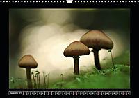 Der Reichswald bei Kleve (Wandkalender 2019 DIN A3 quer) - Produktdetailbild 9