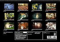 Der Reichswald bei Kleve (Wandkalender 2019 DIN A3 quer) - Produktdetailbild 13