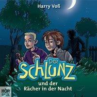 Der Schlunz und der Rächer in der Nacht, 1 Audio-CD, Harry Voß