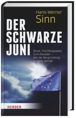 Der Schwarze Juni, Hans-Werner Sinn