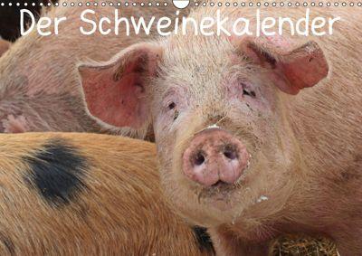 Der Schweinekalender (Wandkalender 2019 DIN A3 quer), Christine Schmutzler-Schaub