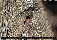 Der Schweinekalender (Wandkalender 2019 DIN A3 quer) - Produktdetailbild 12
