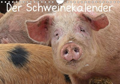 Der Schweinekalender (Wandkalender 2019 DIN A4 quer), Christine Schmutzler-Schaub