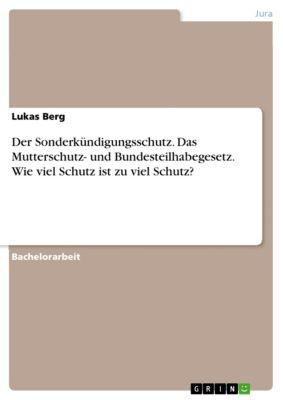 Der Sonderkündigungsschutz. Das Mutterschutz- und Bundesteilhabegesetz. Wie viel Schutz ist zu viel Schutz?, Lukas Berg