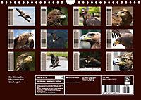 Der Steinadler. Majestätischer Greifvogel (Wandkalender 2019 DIN A4 quer) - Produktdetailbild 13