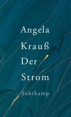 Der Strom - Angela Krauß pdf epub