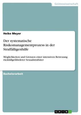 Der systematische Risikomanagementprozess in der Straffälligenhilfe, Heike Meyer